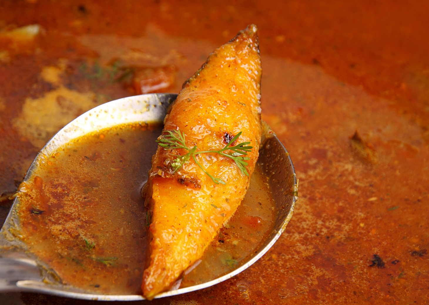 Black Pomfret Fish Curry