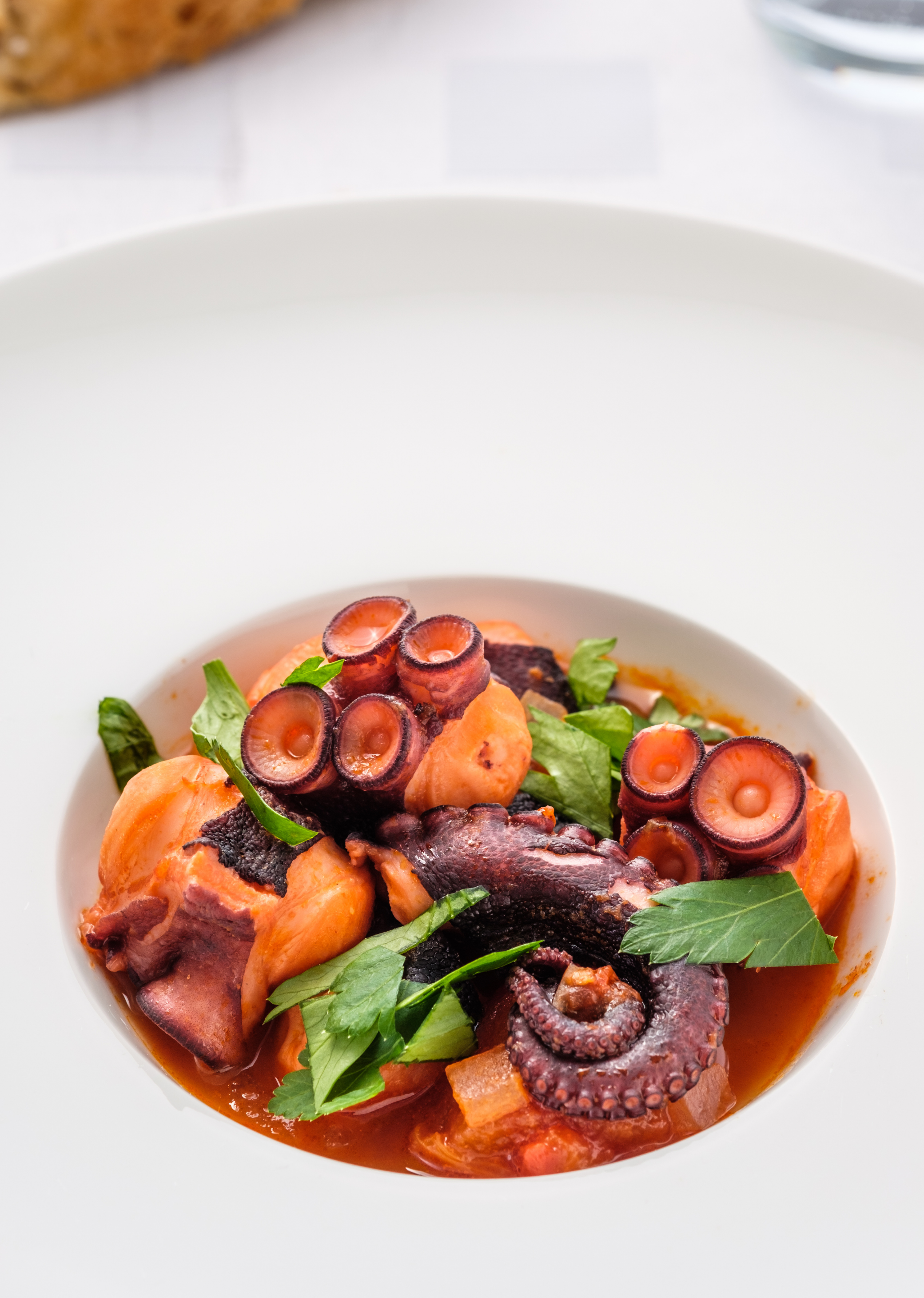 Octopus Stew Recipe, Health Benefits, Nutritional Value and More