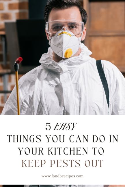 5 Easy Things You Can Do in Your Kitchen to Keep Pests Out Pin